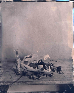 05-05-skull