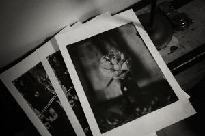 washi-print