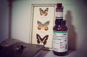 cadmium-bromide