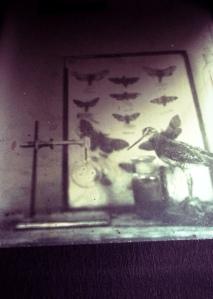 3rd daguerreotype