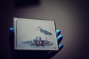 first daguerreotype